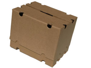Telescopic cartons